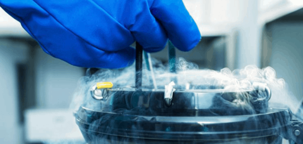 Embryo Cryopreservation services